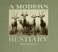 Modern Bestiary, A